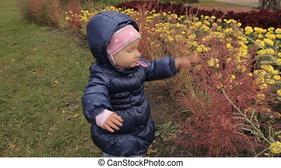 A baby girl beating bushes with a palm of her hand. Grabbing it and trying to tear away the bushes on a flower-bed.