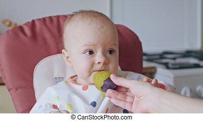A Baby Girl Eating Plum at Home - A baby girl eating a plum...