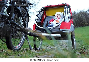 Baby in a child bike trailer