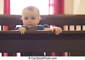 baby in the crib at home bedroom