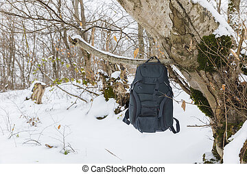 A backpack hanging on a tree in the winter forest