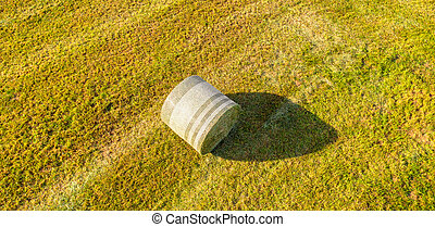 a bale of hay from above panorama