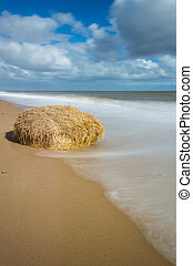 A Bale of Hay on the Sand