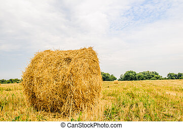 a bale of hay