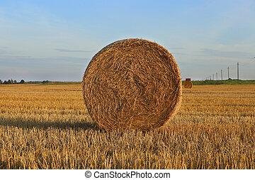 A bale of straw in field.