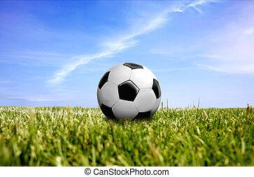 a ball on green grass