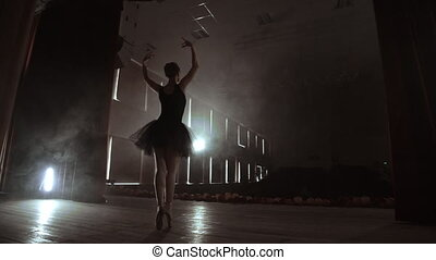 A ballerina dances in a hall with empty seats. A female...