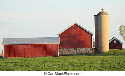 A barn on the farm with a green field in front of it and silo.