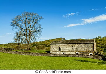 A barn and tree set in English countryside with a green field in the foreground and a wood beyond.