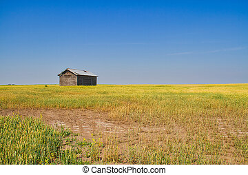 A Barn on the Prairie