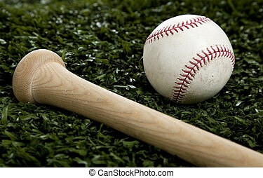 A baseball and Bat on Green Grass