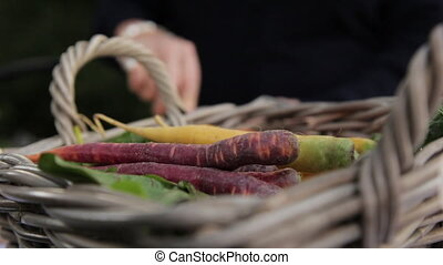 A basket of carrots