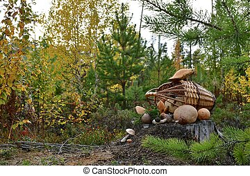 A basket of mushrooms and berries on a stump in the autumn forest.