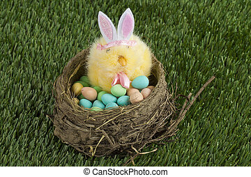 a basket with easter egg and bunny