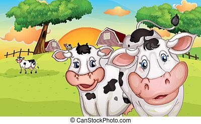 a, bauernhof, mit, viele, kühe