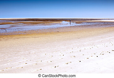 A beach at low tide