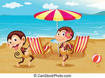 A beach with two monkeys