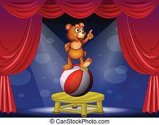 A bear at the circus show