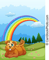 A bear at the hill with a rainbow in the sky