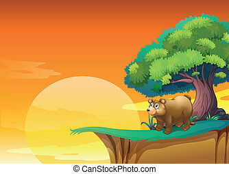 A bear near a cliff
