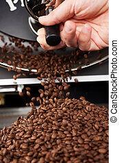 a, bearbeta, till, filtrera, ringa, den, steket, kaffe böna
