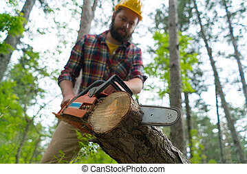 a bearded chainsaw worker cuts wood with chainsaw