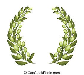 A Beautifu Olive Wreaths on White Background