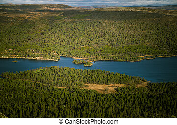 A beautiful aerial view of an autumn forest with lake in Norway. Pine trees from above.