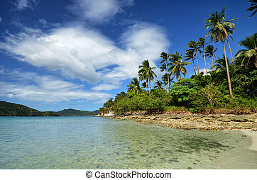 A beautiful beach on the Coral Snake Island in El Nido. Philippines