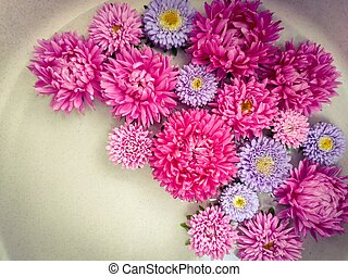 A beautiful bouquet of flowers.