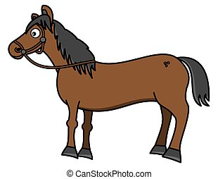 a beautiful brown horse with hitch