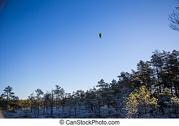 A beautiful colorful hot air baloon flying over the autumn swamp. Sunny wetland landscape in morning with balloon.