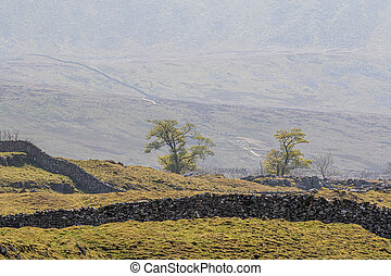 A beautiful day in the Yorkshire dales