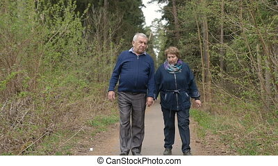A beautiful elderly couple, walking in the park, talking kindly. Good mood, positive life. Love each other, hold hands.