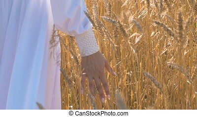 A beautiful girl in a white dress is walking along a field with wheat Hand close-up.