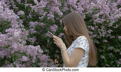 A beautiful girl is taking pictures of a lilac bush. Enjoys beautiful flowers. Breathes a beautiful fragrance