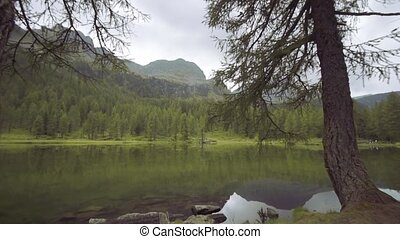 A beautiful lake in the middle of the green trees of the mountains