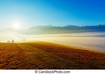 A beautiful morning landscape with sunshine and fog.