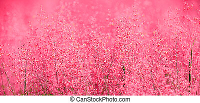 A beautiful pink scene of nature