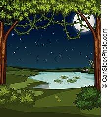 A beautiful pond at night