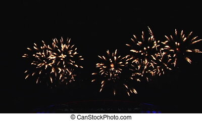 A beautiful pyro show fireworks in night sky.