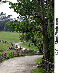 A beautiful ranch with cows, trees, hills and paths.