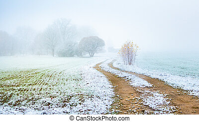 A beautiful scenery of a gravel road in the late autumn with first snow.