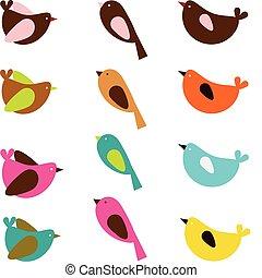 colorful sparrows in vector