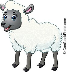 A beautiful sheep isolated on white background
