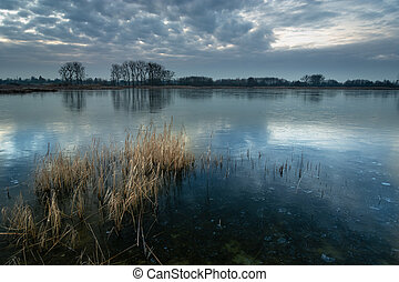 A beautiful shot of a frozen lake with dry reeds, trees on the horizon and evening sky