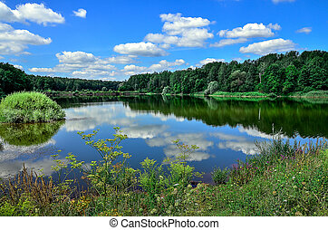 A beautiful summer landscape with a river, clouds and plants