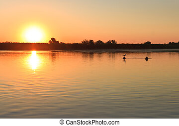 sunrise in the Danube Delta - a beautiful sunrise in the ...