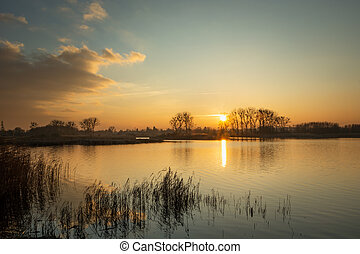A beautiful sunset on a quiet lake with reeds