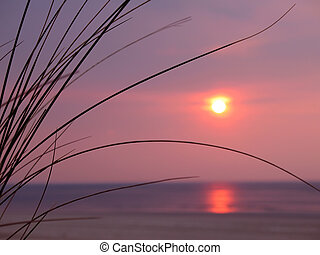 A beautiful sunset over the ocean with dune grass in the...
